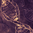 Digital illustration DNA — Stock Photo #36254547