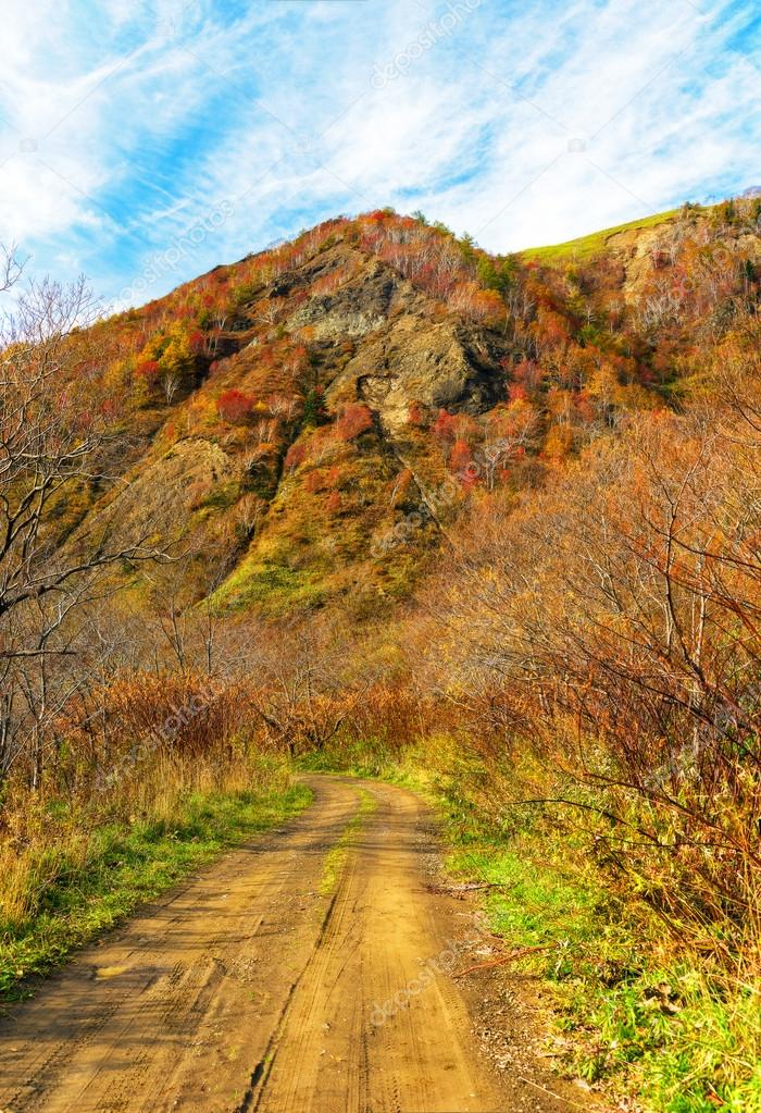 Autumn Landscape. Sakhalin. — Stock Photo #14073258