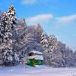 Cabin in the winter woods. — Stockfoto
