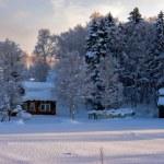 cabane dans les bois d'hiver — Photo