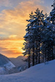 Vintermorgon. — Stockfoto