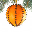 Stock Photo: Christmas Toy of oranges and cloves