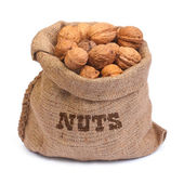 Bag of walnuts isolated on white background — Stock Photo