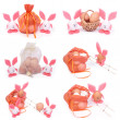 A set of six photographs. Easter bunnies and eggs isolated on white background — Stock Photo #21743117