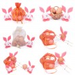 Stock Photo: Set of six photographs. Easter bunnies and eggs isolated on white background