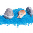 Sea pebbles and shells on a blue bath salts - Stock Photo