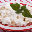 Fresh cottage cheese with mint leaves in a red plate — Stock Photo