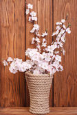 Flowering apricot branch in a vase on a wooden boards background — Stock Photo