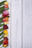 Festive frame of flowers tulips on the wooden background — Стоковое фото