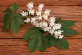 Chestnut flowers with green leaves on brown wooden table — Stock Photo