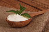 Sour cream in a wooden spoon with mint on a canvas napkin — Stock Photo