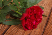 Red peony on a brown wooden table — Stock Photo