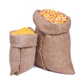 Sacks of grain and corn groats isolated on a white background — Stock Photo