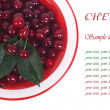 Plate with cherries and green leaf with text isolated — Stock Photo