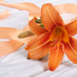 Stock Photo: Lily flower with orange ribbon on wooden table