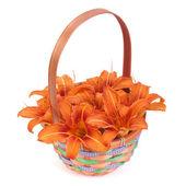 Boeket van oranje lelies in een mand van de gift geïsoleerd op wit — Stockfoto