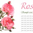 Stock Photo: Beautiful festive greeting card with pink roses isolated
