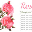 Stockfoto: Beautiful festive greeting card with pink roses isolated