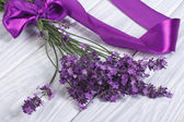 Bouquet of fresh lavender flowers with purple ribbon — Stock Photo