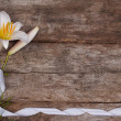 Flower frame of fragrant white lilies with a ribbon on a wooden — Stock Photo #28128955