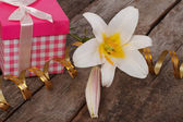 Gift pink box and a white lily flower on the table — Stock Photo