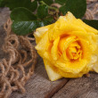 Delicate yellow rose on an old rough wooden table — Stock Photo