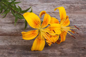 Bouquet of bright yellow flowers lily on an old wooden — Stock Photo