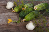 Cucumber, garlic and dill for pickling ingredients on the table — Stock Photo