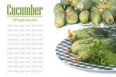 Färsk gurka, sallad och dill på en tallrik som isolerade — Stockfoto