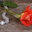 Orange rose with dew drops and beads of natural stone — Stock Photo