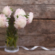 Pale pink asters in a glass vase with a ribbon — Stock Photo