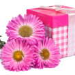 Bouquet of asters and pink gift box with bow isolated — Stok Fotoğraf #30052747