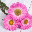 Bouquet of pink flowers asters lying on a light wooden table — Stock Photo