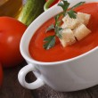 Red vegetable soup gazpacho with croutons close up — Zdjęcie stockowe #32236377