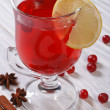 Spiced cranberry drink with lemon and cinnamon — Stock Photo