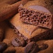 Aerated chocolate, coffee beans and cinnamon sticks closeup — Stock Photo #39886345