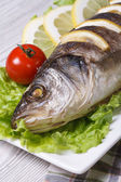 Grilled sea bass with lemon, lettuce vertical macro — Stock Photo