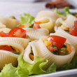 Fresh vegetable salad inside lumakoni pasta — Stock Photo