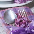 Table setting in violet colors, decoration flowers lilacs.  — Stock Photo #46079871