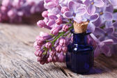 Oil from the fragrant flowers of lilac horizontal — Stockfoto