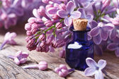 Tincture of aromatic lilac flowers close-up  — Stock Photo