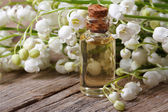 Tincture of flowers fragrant lilies of the valley. macro  — Stock Photo