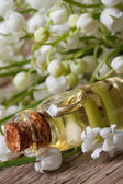 Tincture of lilies of the valley in a bottle. macro — Stock Photo