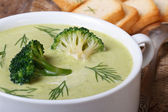 Cream soup of broccoli with dill and croutons. macro — Photo