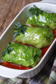 Cabbage rolls with meat and sauce on a dish  — Stock Photo