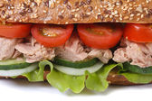 Sandwich with tuna and vegetables macro isolated — Stock Photo