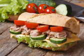 Tuna sandwich with vegetables on background of ingredients. — Stock Photo