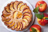 Peach tart and fresh fruit closeup top view — Stockfoto