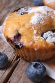 Muffin with blueberries and powdered sugar macro — Stock Photo