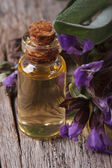 Sage extract in a small bottle on the table macro — Stockfoto